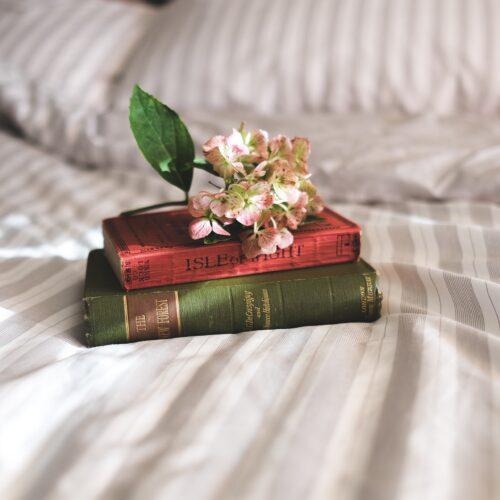 books-2619265_1920
