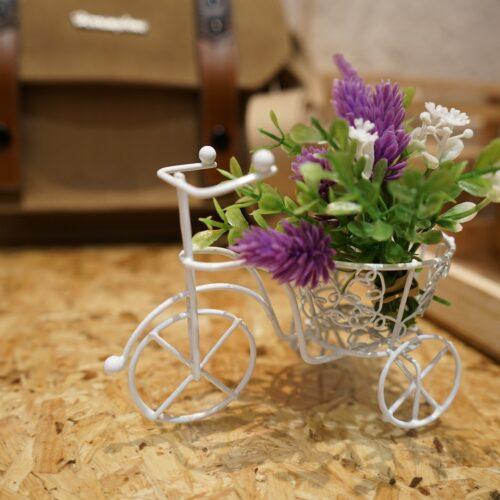 bike-tiny-2377458_1920